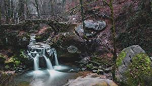 Обои Люксембург Речка Водопады Камень Мосты Мох Schiessentumpel Cascade
