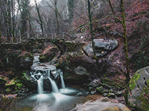 Обои Люксембург Речка Водопады Камень Мосты Мох Schiessentumpel Cascade Природа
