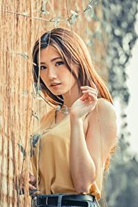Картинки Азиаты Размытый фон Шатенки Взгляд Руки молодая женщина