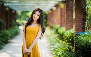 Фото Азиатки Боке Поза Платья Взгляд Шатенка