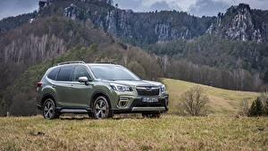 Картинка Гора Субару Металлик CUV Forester, 2019 авто