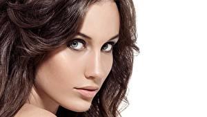 Картинка Лица Модель Волос Шатенка Красивый Взгляд молодая женщина
