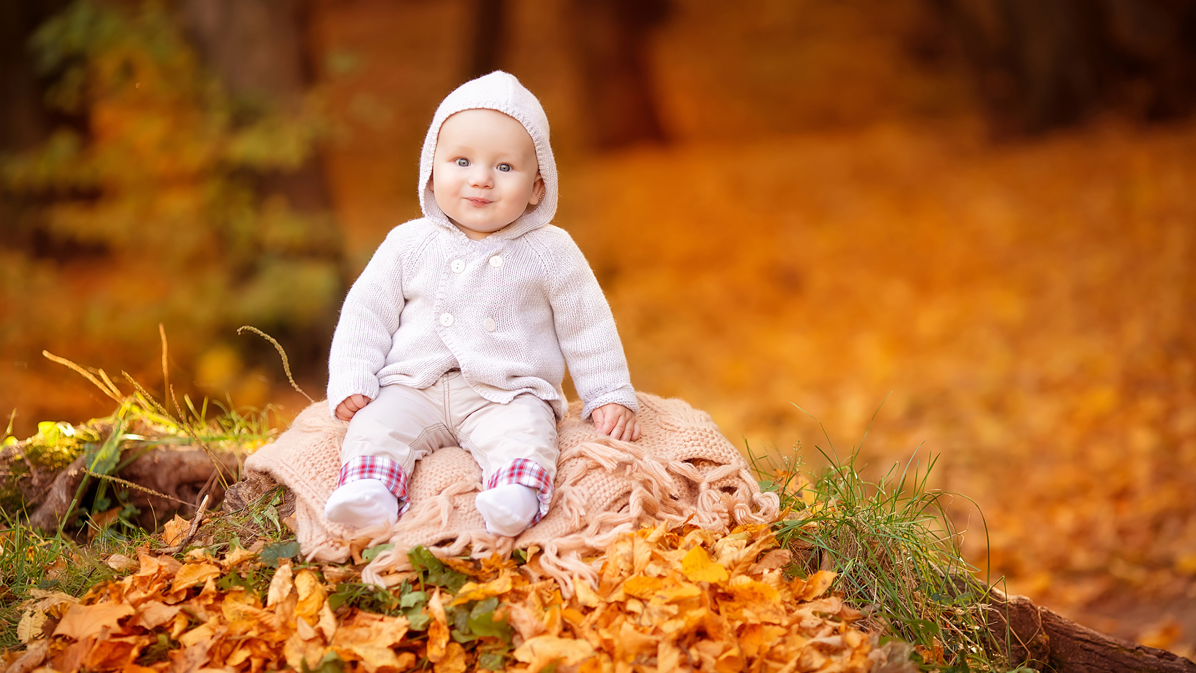 Картинки младенец Улыбка Дети Осень смотрит 3840x2160 младенца Младенцы грудной ребёнок улыбается ребёнок осенние Взгляд смотрят