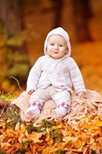 Картинки Осень Младенец Улыбка Смотрит Дети