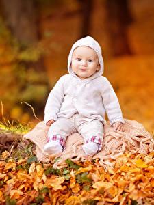 Картинки Осенние Грудной ребёнок Улыбка Смотрит Ребёнок