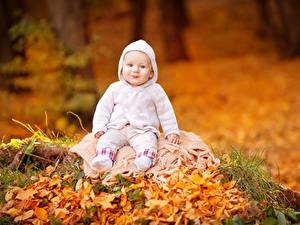 Картинки Осенние Грудной ребёнок Улыбка Смотрит