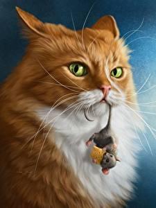 Фотографии Коты Мыши Сыры Взгляд животное