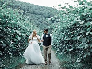 Картинка Мужчина Влюбленные пары Тропы Двое Невесты Платья Улыбка Жених