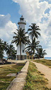 Картинка Тропики Шри-Ланка Маяки Берег Пальмы Облака Galle