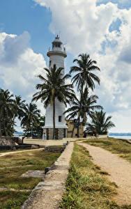 Картинка Тропики Шри-Ланка Маяки Берег Пальма Облако Galle