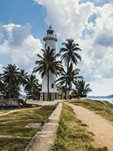 Картинка Тропики Шри-Ланка Маяки Берег Пальма Облако Galle Природа
