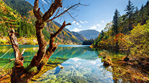 Фотографии Цзючжайгоу парк Китай Парк Осень Реки Горы Пейзаж Ствол дерева Деревья Природа