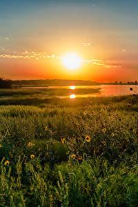 Фотография Озеро Рассветы и закаты Штаты Техас Трава Природа