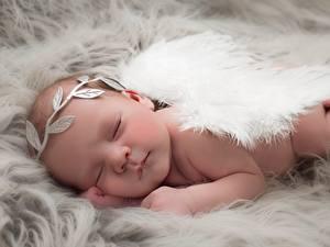 Картинка Ангелы Младенцы Спящий Дети