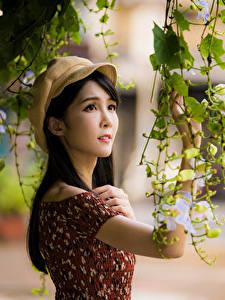 Картинки Азиатки Ветвь Рука Бейсболка Платья Боке девушка