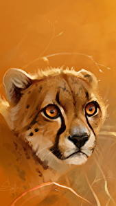 Фотографии Большие кошки Гепарды Крупным планом Голова Животные