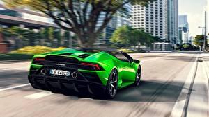 Фотография Ламборгини Сзади Зеленая Родстер Скорость Салатовая Spyder Evo Huracan авто