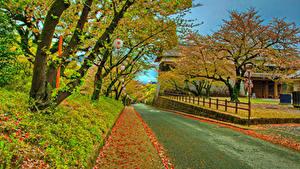 Картинка Япония Осень Замки Дороги HDR Деревьев Листва Kumamoto Castle Природа