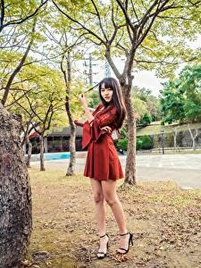 Фотография Азиаты Деревьев Платье Ног молодые женщины