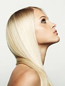 Обои Блондинки Фотомодель Волос Красивая Сером фоне девушка