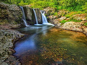 Фотография Бразилия Водопады Утес Мох Кустов Rio Grande do Sul