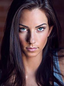 Картинка Смотрят Фотомодель Лицо Волосы Брюнетка Красивые Janna Breslin молодые женщины