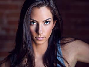Картинка Смотрит Модель Лицо Волосы Брюнетка Красивые Janna Breslin Девушки