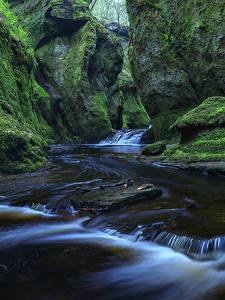 Фото Шотландия Водопады Утес Мхом Finnich Glen Природа