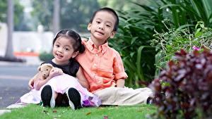 Фотография Азиаты Мишки 2 Трава Мальчики Девочки Сидит Дети