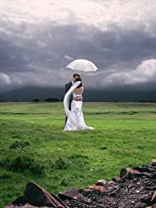 Картинка Влюбленные пары Луга Свадебные Вдвоем Жених Невесты Траве Зонт Обнимаются Природа