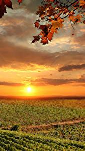 Обои Италия Тоскана Рассветы и закаты Поля Небо Осень Облака Солнце Природа