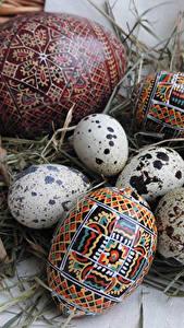 Обои Праздники Пасха Яйца Соломе