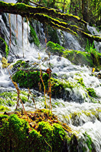 Фотографии Китай Цзючжайгоу парк Парки Водопады Мха