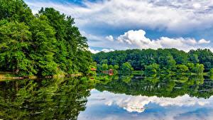 Обои США Озеро Лес Отражение Columbia Maryland Lake Elkhorn Природа