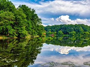 Обои США Озеро Лес Отражение Columbia Maryland Lake Elkhorn