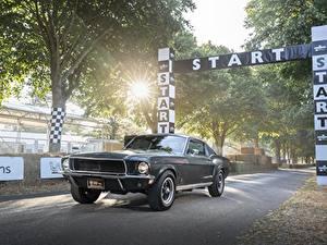 Фотография Форд Черный Fastback 2018, 1968 Mustang GT Bullitt Авто