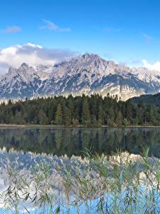 Картинка Германия Озеро Леса Горы Пейзаж Lautersee lake Природа