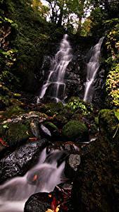 Картинки Япония Водопады Камни Скалы Мхом Листва Fudotaki Falls Katsuyama