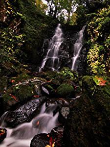 Картинки Япония Водопады Камни Скалы Мхом Листва Fudotaki Falls Katsuyama Природа