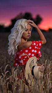 Фотографии Поля Блондинка Шляпа Модель Margo Dmitry Medved молодые женщины