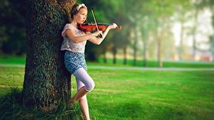 Картинки Скрипки Девочки Ствол дерева ребёнок