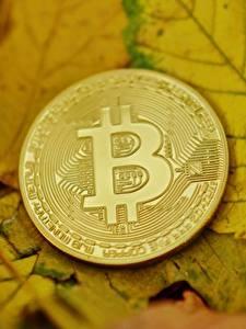 Фотографии Деньги Bitcoin Монеты Вблизи Лист