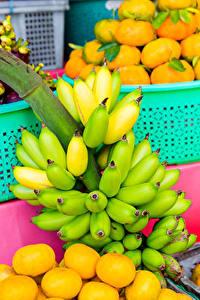 Фотографии Фрукты Бананы Много Цитрусовые Пища