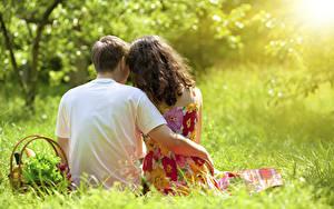 Фотография Любовники Мужчины Траве Корзины Две Сидит Обнимает Вид сзади Боке девушка