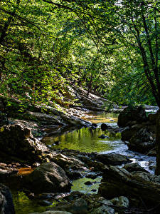 Картинки Крым Россия Камни Ручей Природа