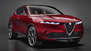 Картинка Альфа ромео Сером фоне Красная 2019 Tonale Concept авто