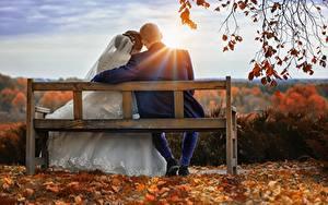 Фотографии Осень Рассветы и закаты Мужчины Влюбленные пары Скамья Двое Сидящие Жених Невеста Лучи света Ветвь Девушки