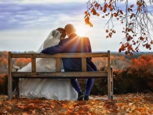 Фотографии Осенние Рассветы и закаты Мужчина Любовники Скамейка Двое Сидящие Жениха Невесты Лучи света Ветвь девушка