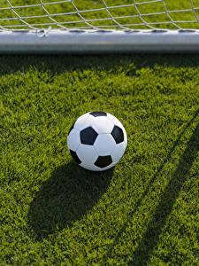Картинки Футбол Газоне Мячик спортивные
