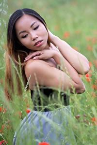 Фото Азиатки Траве Боке Шатенки Поза Рука Девушки